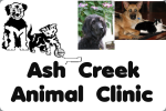 Bob & Laura Archer - Ash Creek Animal Clinic